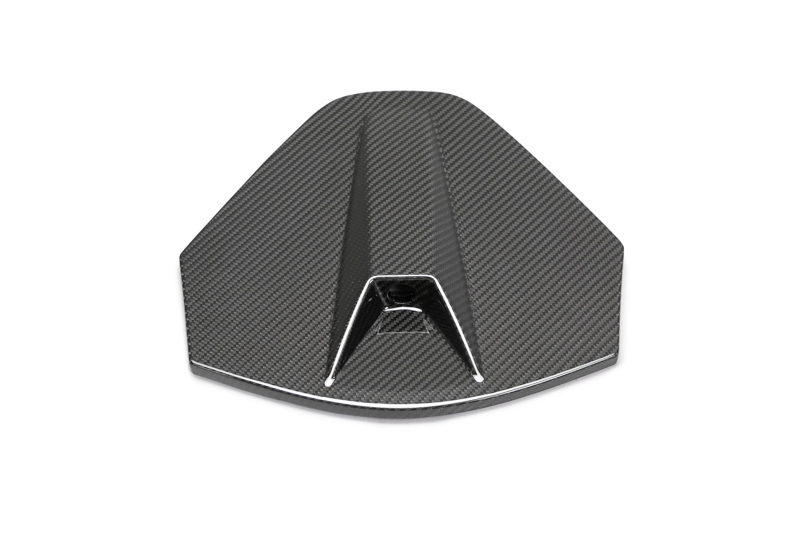 Anderson Composites C8 Corvette Carbon Fiber Decklid Camera Housing Panel